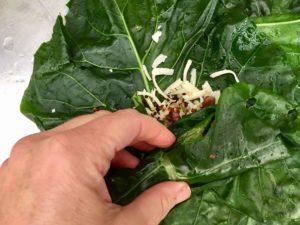 roll broccoli leaf