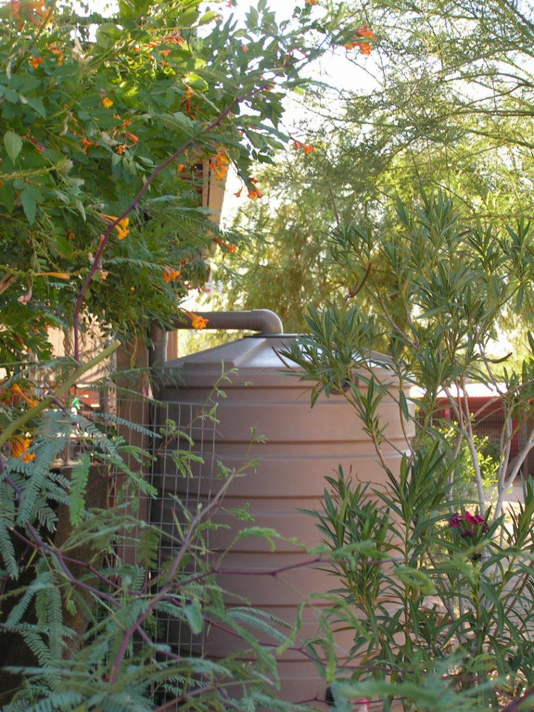 tank hidden by plants