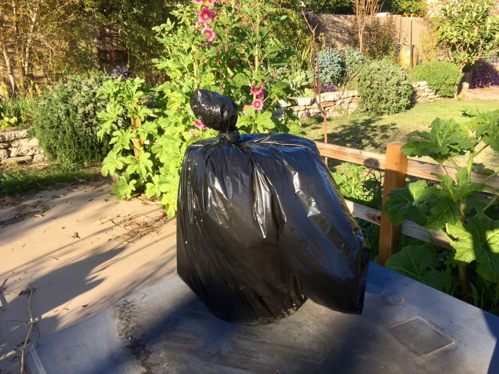 bucket in black plastic bag