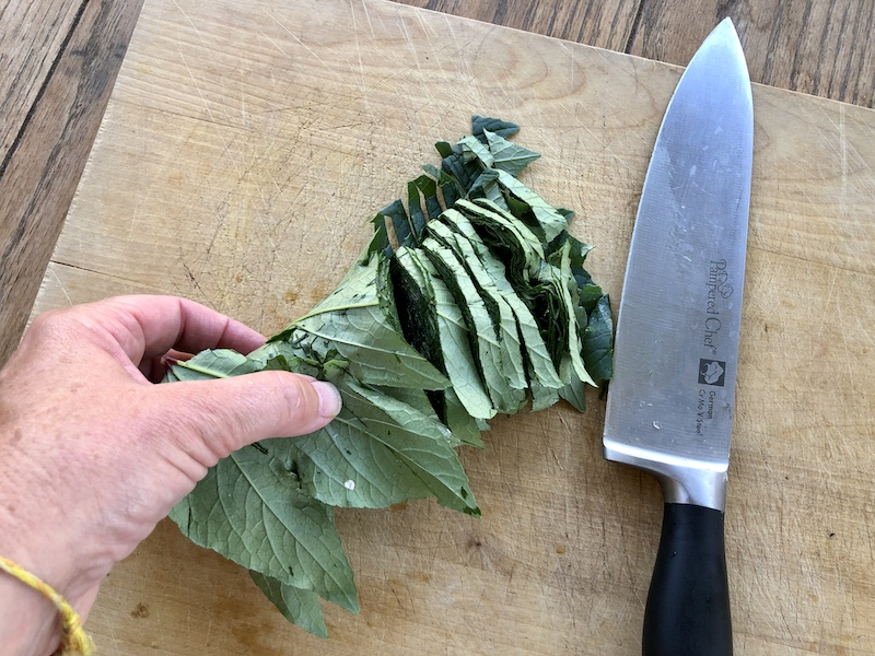 rolled hibiscus for chopping